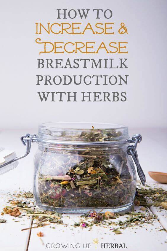 breast-feed-production
